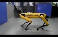 Crearon un perro robot capaz de abrir puertas